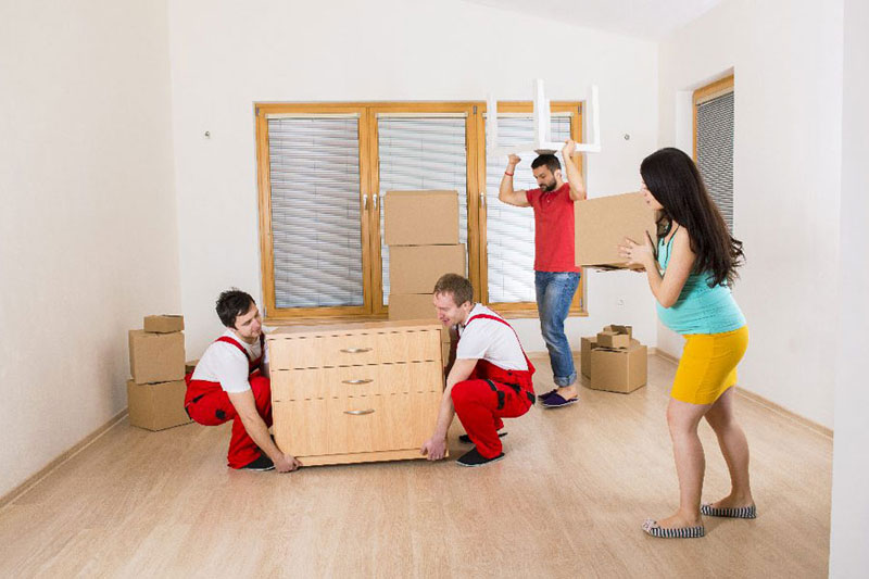 Office Movers Edmonton